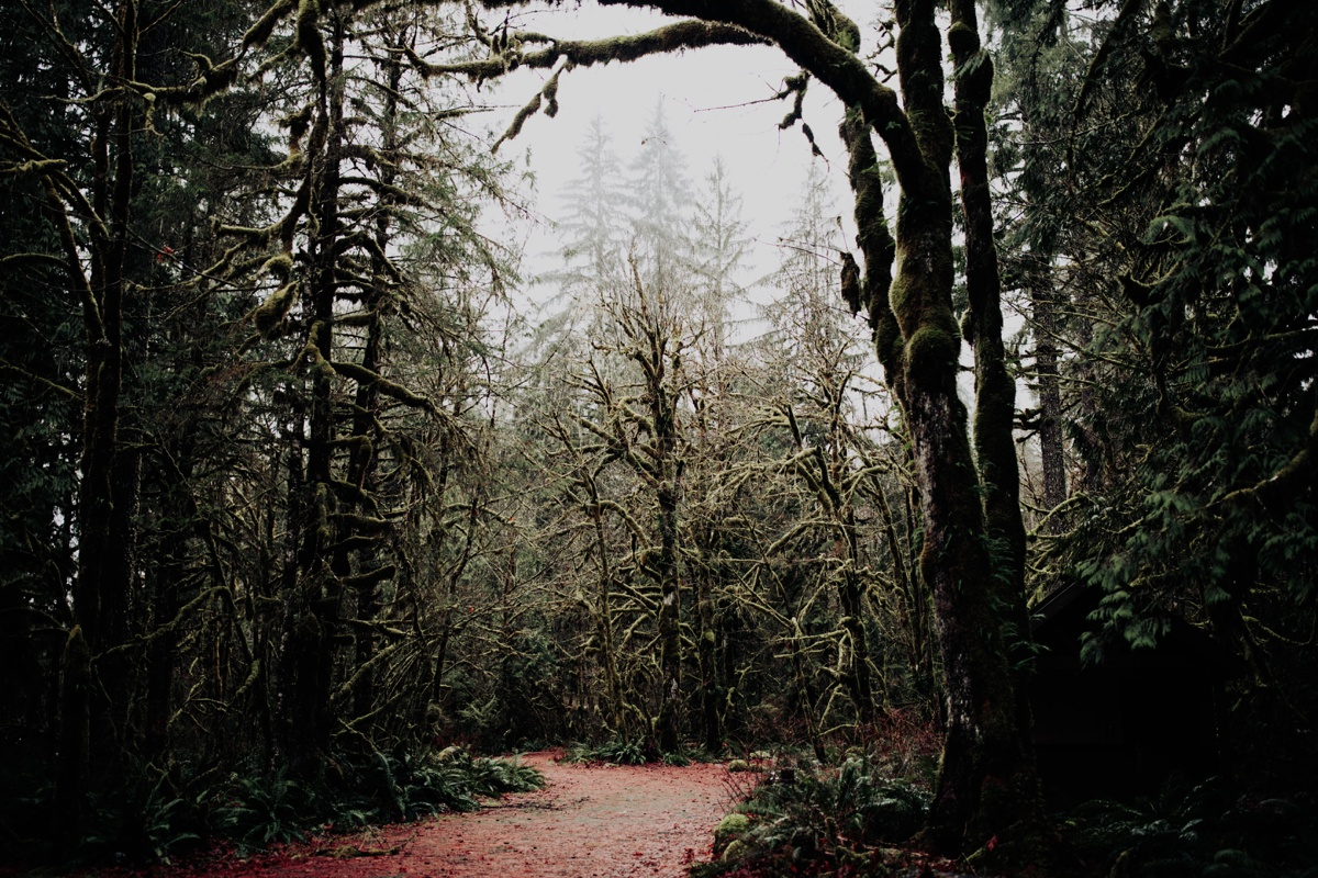 Wenatchee-national-forest-engagement-session-photographer-001.jpg